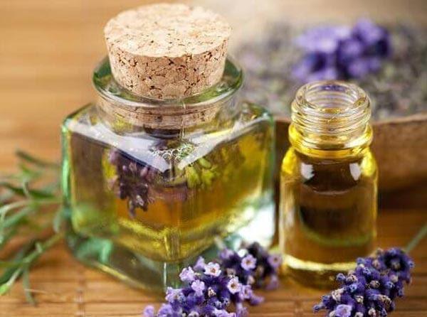 extractos de plantas medicinales