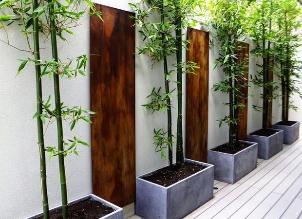 plantas de exterior en macetas